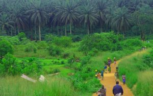 a road looking for Where Is Sierra Leone
